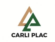 L.F.R. Carli e Cia Ltda